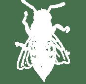 Bee Swarm Removal Riverside